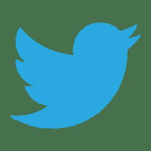 Twitter tipos de logotipo